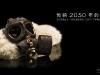 32_fashion_gas-mask
